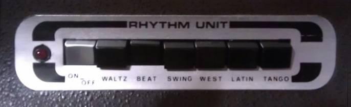 Skyline rhythm panel